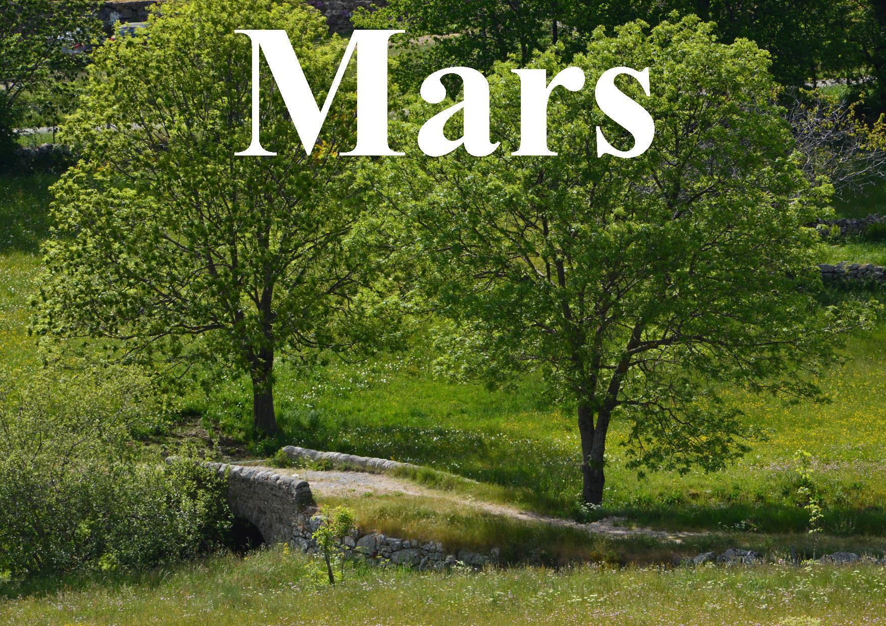 Mars site