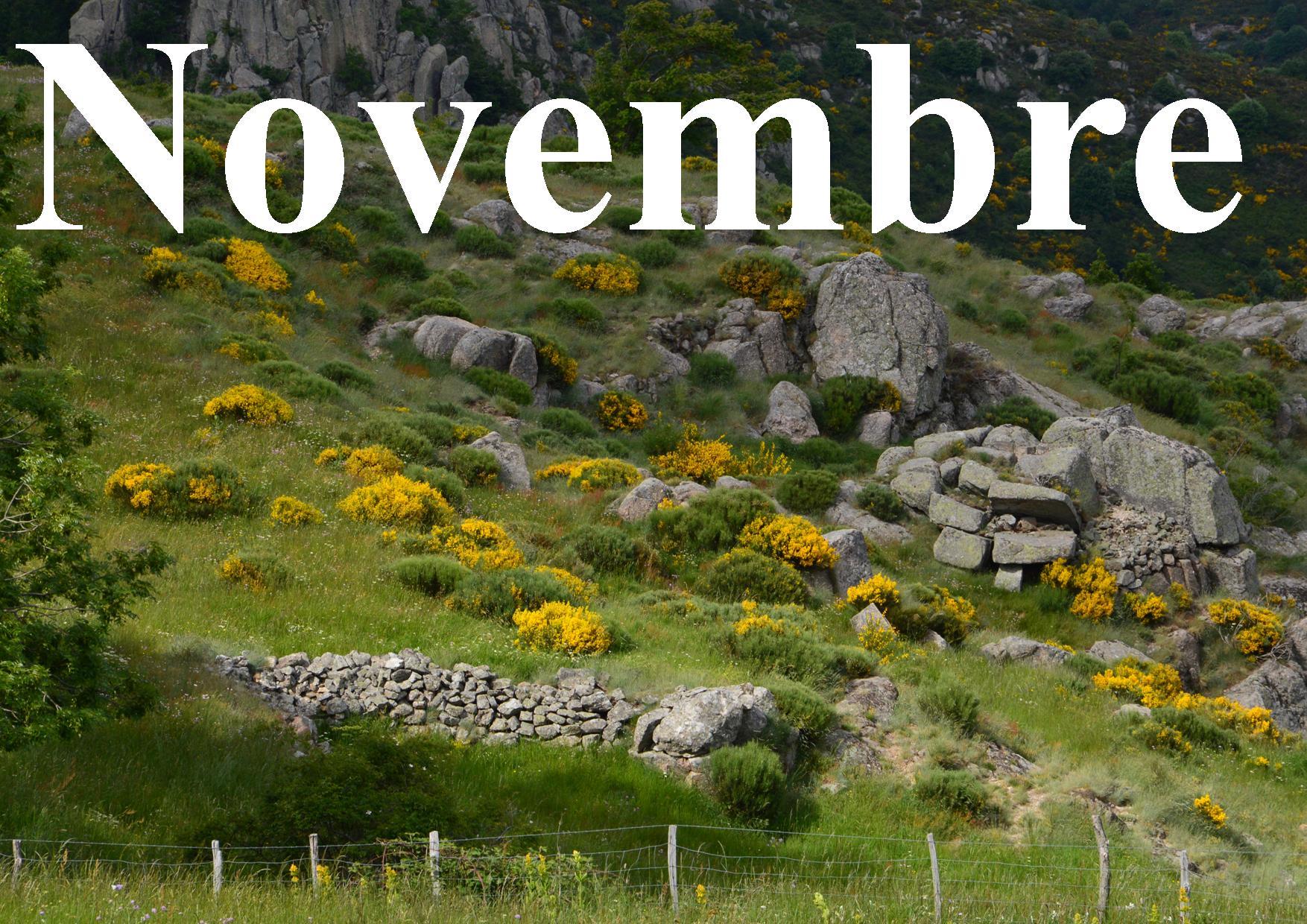 Novembre site