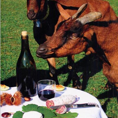 Cuisine ancestrale du pays d'Ardèche par Alice LACOUR