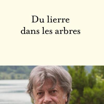 Du lierre dans les arbres Hervé VILARD