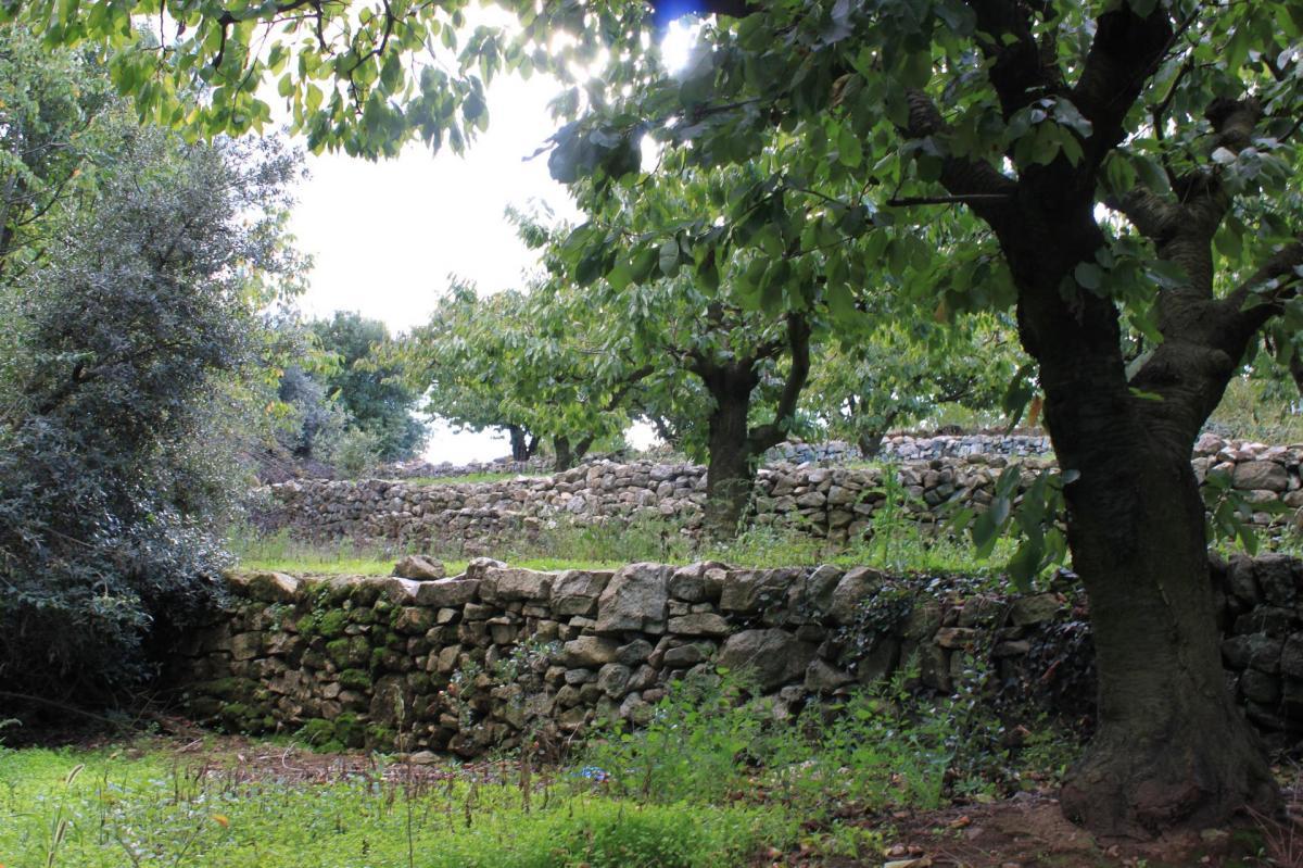 Sentier 6